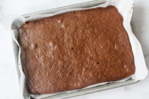 Baked devil's food cake in a small sheet pan