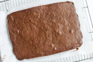 Baked Devil's food cake with parchment paper on a cooling rack